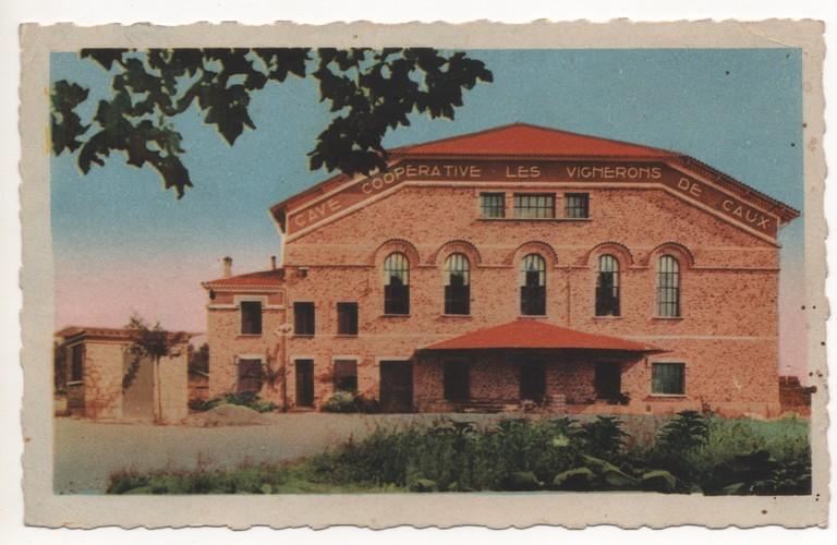 caux cave cooperative 1949